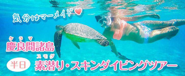 慶良間諸島半日素潜り・スキンダイビングツアー